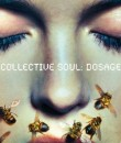 Collective Soul Dosage Album Cover Featured