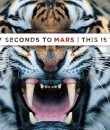 30 seconds to mars album cover image featured