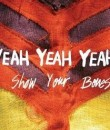 yeah yeah yeahs album cover image featured