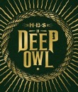 in deep owl ben shepherd soundgarden album cover image featured