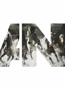 Альбом Awolnation Run Скачать Торрент - фото 4