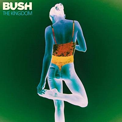 Bush - Flowes on a Grave