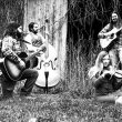 Black and white photo of Michigan folk band The Wild Honey Collective.